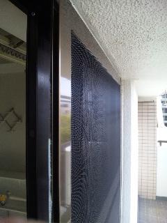 掃出し窓の持出し網戸