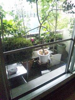 テラス窓の大きな網戸